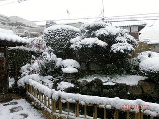 雪の朝1.jpg