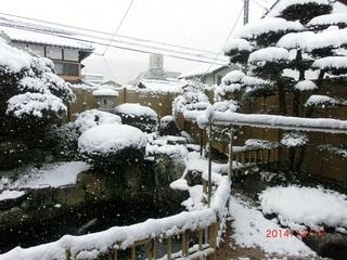 雪の朝2.jpg